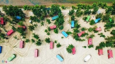 'Ma trận' container giữa rừng phòng hộ ven biển