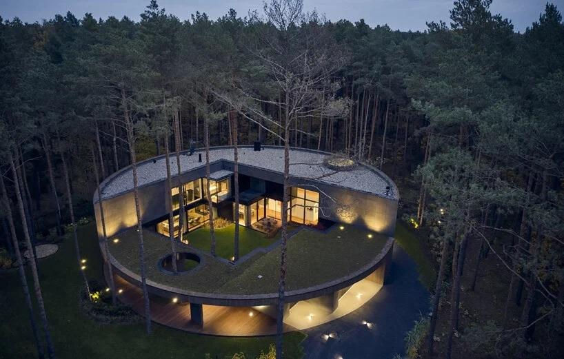 Ngôi nhà hình khúc cây ẩn giữa rừng thông