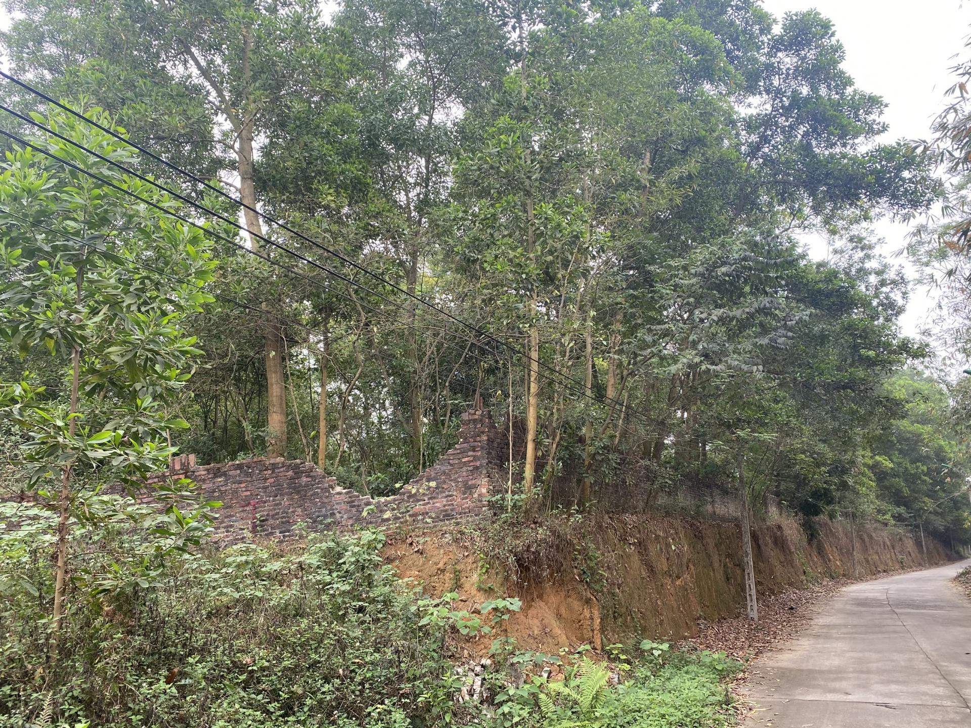 Vĩnh Phúc: Việc huy động vốn tại dự án Khu nhà ở đô thị Việt Thành vi phạm như thế nào?