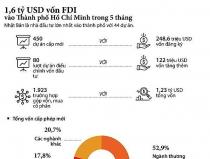 1,6 tỷ USD vốn FDI đổ vào TP.HCM trong 5 tháng đầu năm