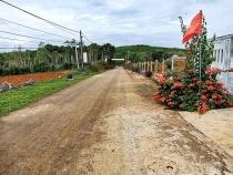 Cam Lộ (Quảng Trị): Gần một thập niên xây dựng nông thôn mới