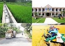 Công nhận 3 huyện đạt chuẩn nông thôn mới