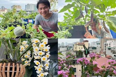 Biến sân thượng thành khu vườn, Trọng Tấn thu hoạch nhiều trái cây, rau củ
