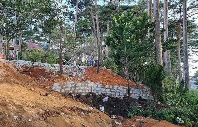 Lâm Đồng: Xử phạt 3 kẻ chiếm đất rừng trong VQG Bidoup-Núi Bà