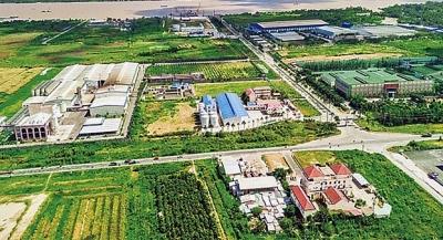 Hậu Giang: Chấp thuận cho Công ty TNHH Một thành viên Sunpro Steel thuê đất xây dựng Nhà máy luyện, cán thép Sunpro