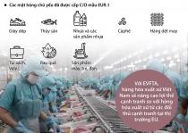Cấp hơn 7.200 bộ chứng nhận xuất xứ hàng hóa đi EU