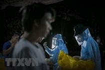 Việt Nam đã có 910 trường hợp mắc COVID-19 được công bố khỏi bệnh