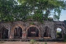 Ngôi đình hơn 100 tuổi nằm dưới bộ rễ cây bồ đề