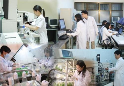 Việt Nam là hình mẫu về đổi mới sáng tạo tại các nước đang phát triển