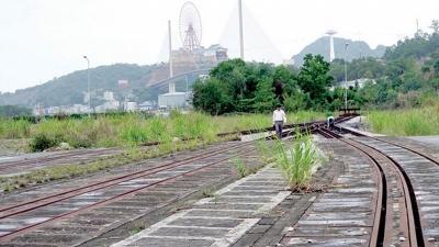 Xem xét triển khai trở lại dự án đường sắt Yên Viên - Hạ Long - Cái Lân