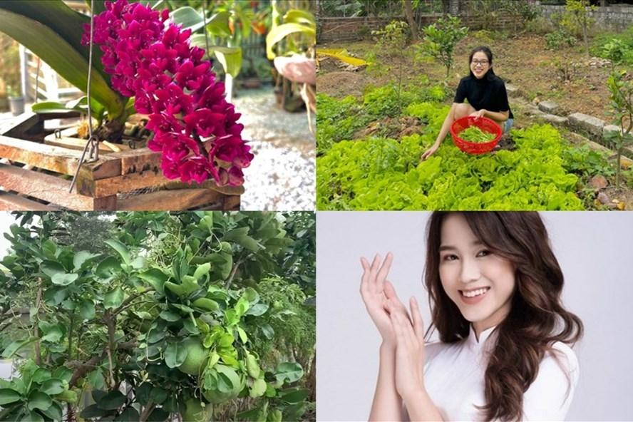 Khám phá khu vườn ở quê nhiều rau và cây trái của nhà Hoa hậu Đỗ Thị Hà
