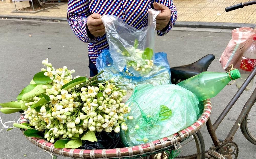 Hà Nội: Người dân chọn mua hoa bưởi dịp Rằm tháng Giêng