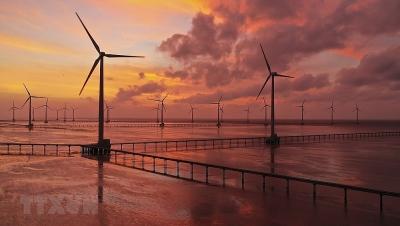 Việt Nam nằm trong top 3 chuyển đổi năng lượng tái tạo ở châu Á-TBD