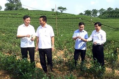 Thái Nguyên: Đẩy nhanh chuyển đổi số của ngành Nông nghiệp và Phát triển nông thôn