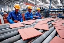 Thị trường vật liệu xây dựng bắt đầu hồi phục