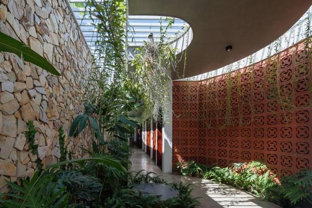 Nhà toàn cây xanh và giếng trời ở Kon Tum khiến ai cũng ao ước khi giãn cách