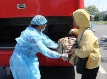 Không có ca lây nhiễm mới, Việt Nam đã điều trị khỏi bệnh 815 ca