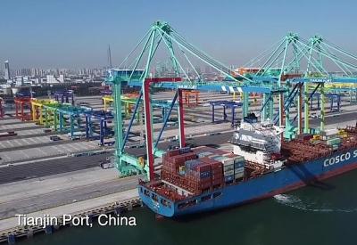 Cảng container không carbon đầu tiên trên thế giới đi vào hoạt động