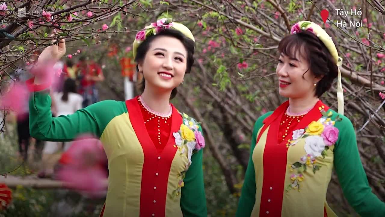 Chụp ảnh ở vườn đào Nhật Tân